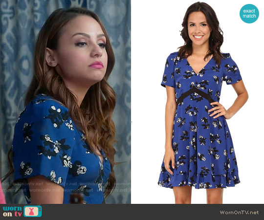 Rebecca Taylor 'Alyssum' Print Dress worn by Aimee Carrero on Young & Hungry