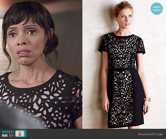 Anthropologie Lasercut Basalt Sheath worn by Tamara Taylor on Bones