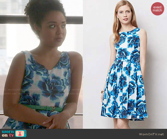 Anthropologie Rosebloom Burnout Dress worn by Aisha Dee on Chasing Life