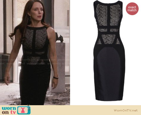 Antonio Berardi Lace Panel Dress worn by Madeleine Stowe on Revenge