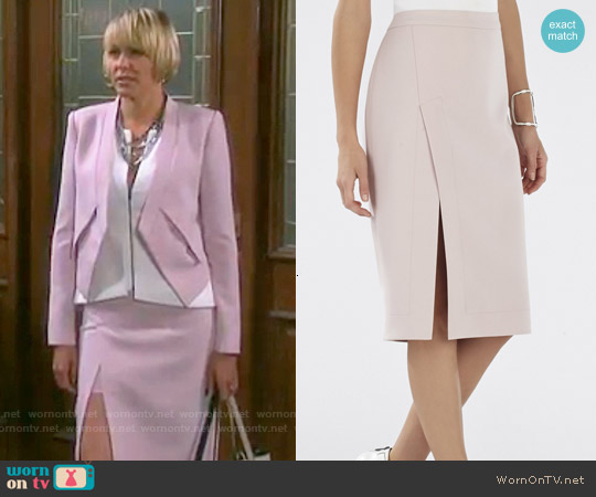Bcbgmaxazria Grayce Skirt worn by Arianne Zucker on Days of our Lives