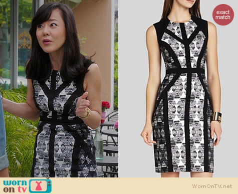 Bcbgmaxazria Holly Dress worn by Yunjin Kim on Mistresses