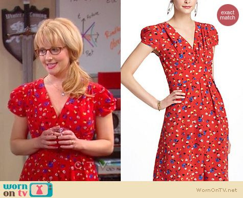 The Big Bang Theory Fashion: Anthropologie Basque Floral dress by Karen Walker worn by Bernadette