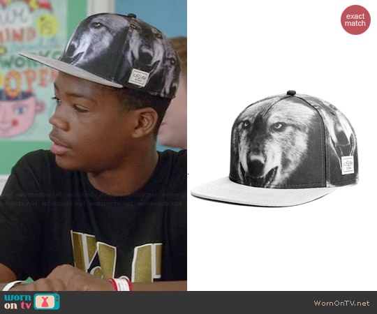 Cayler & Sons Big Bad Wolf Snapback worn by Astro on Red Band Society