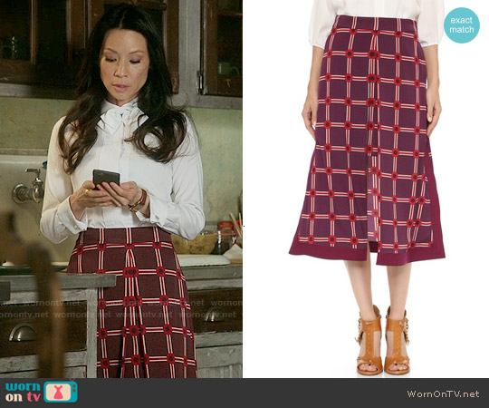 CG Long Apron Skirt worn by Lucy Liu on Elementary