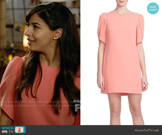Cynthia Steffe 'Sunday' Crepe Shift Dress worn by Hannah Simone on New Girl