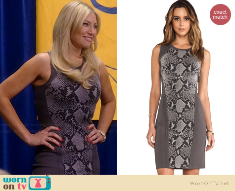 Diane von Furstenberg Franca Dress worn by Ari Graynor on Bad Teacher