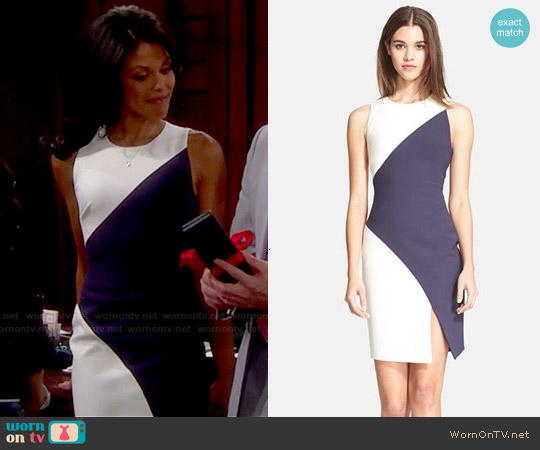 Elizabeth and James Klein Colorblock Sheath Dress worn by Karla Mosley on The Bold & the Beautiful