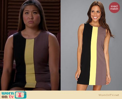 Glee Fashion: Vince Camuto Tri-Colorblocked Shift Dress worn by Jenna Ushkowitz