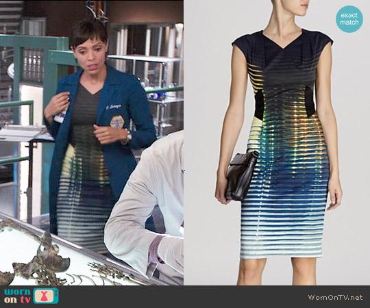 Karen Millen Modern Stripe Signature Stretch Dress worn by Tamara Taylor on Bones