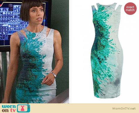 Karen Millen Splash Print Dress worn by Tamara Taylor on Bones