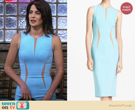 Michael Kors Pebble Crepe Dress worn by Cobie Smulders on HIMYM
