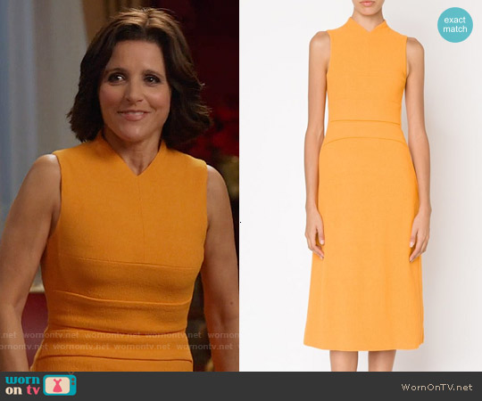 Narciso Rodriguez Sleeveless Flared Dress worn by Julia Louis-Dreyfus on Veep