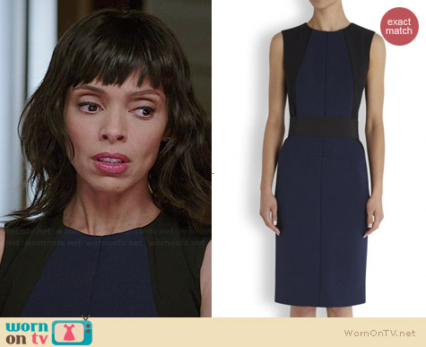 Sportmax Freda Dress worn by Tamara Taylor on Bones