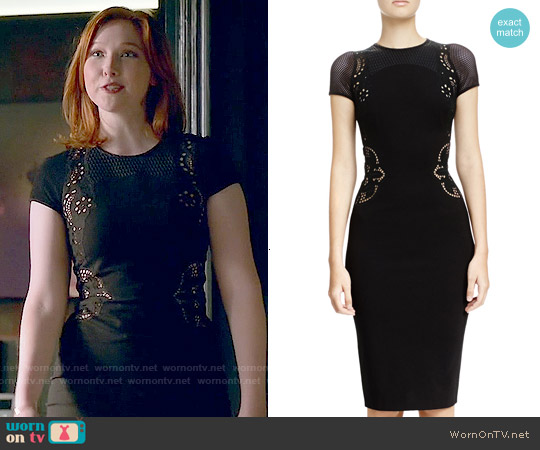 Stella McCartney Mesh-Inset Floral Embroidered Sheath Dress worn by Molly C. Quinn on Castle
