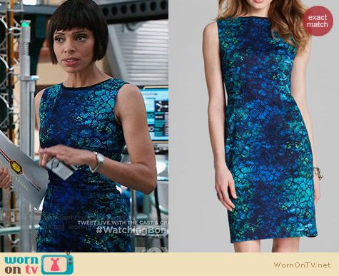 T Tahari Skyler Sahara Print Dress worn by Tamara Taylor on Bones