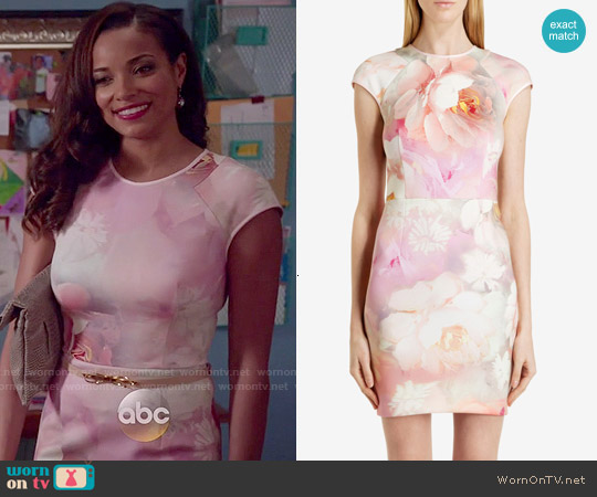 Ted Baker Quaro Rose on Canvas Fitted Dress worn by Rochelle Aytes on Mistresses
