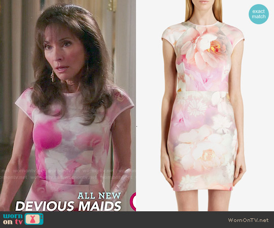 Ted Baker Quaro Rose on Canvas Fitted Dress worn by Susan Lucci on Devious Maids