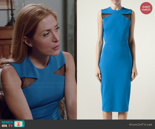 Victoria Beckham Mesh Insert Dress worn by Sasha Alexander on Rizzoli & Isles