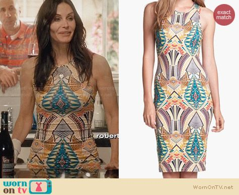 WAYF Print Bodycon Dress worn by Courtney Cox on Cougar Town