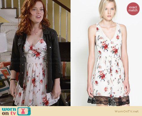 Zara Combination Lace Dress worn by Jane Levy on Suburgatory